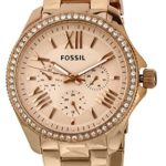 Fossil Damen-Armbanduhr Retro Traveler Analog Quarz Edelstahl beschichtet AM4483 B00BPJHLDE